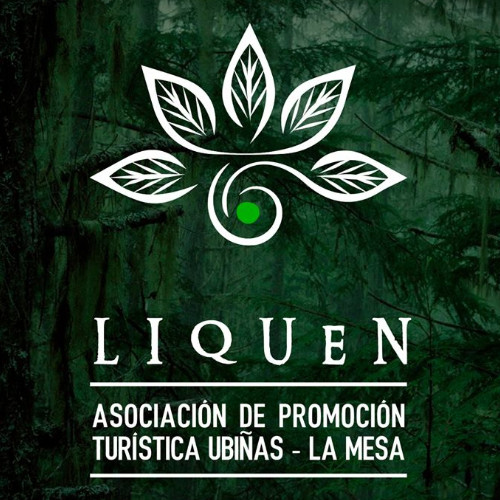 Liquen Logo